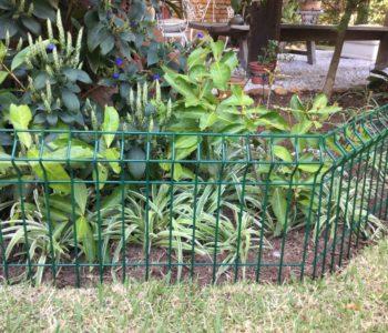 belgo jardim